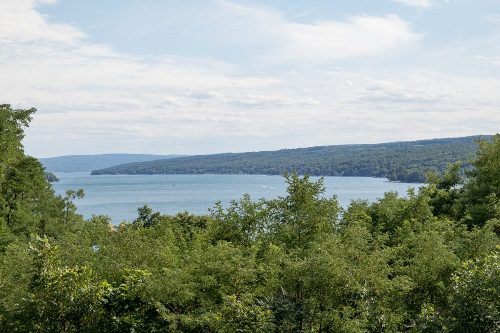 Keuka Lake from a distance.
