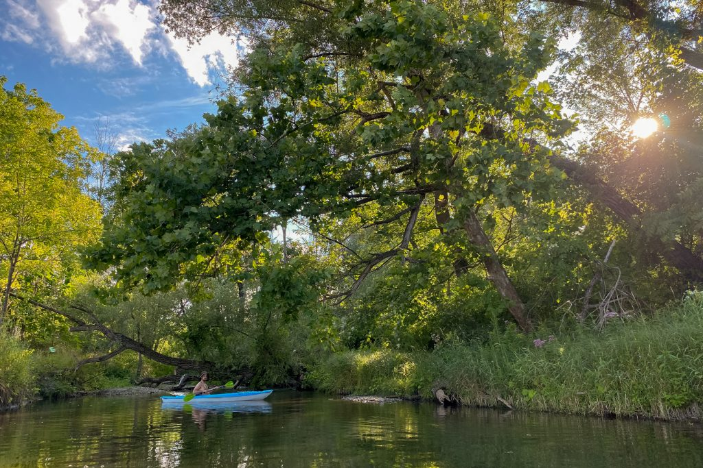 A man kayaks in a creek that leads into Keuka Lake in the Finger Lakes Region of Upstate New York.