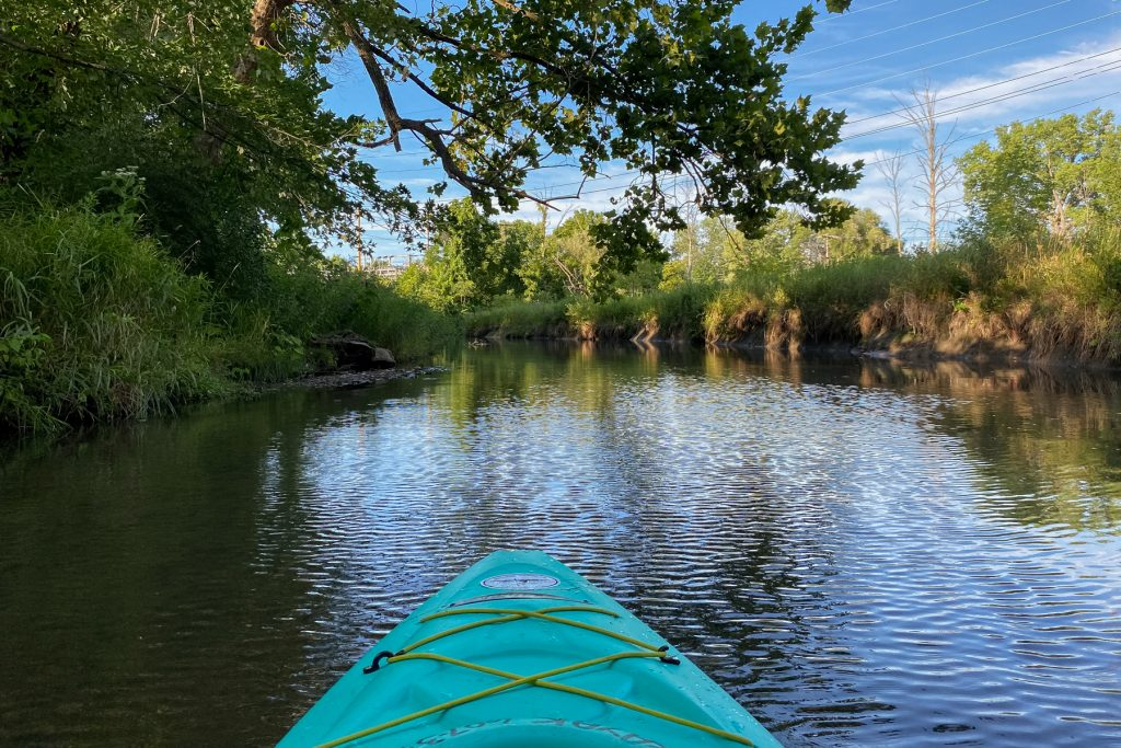 The view from a kayak in a creek from Keuka Lake in the Finger Lakes Region of upstate New York.