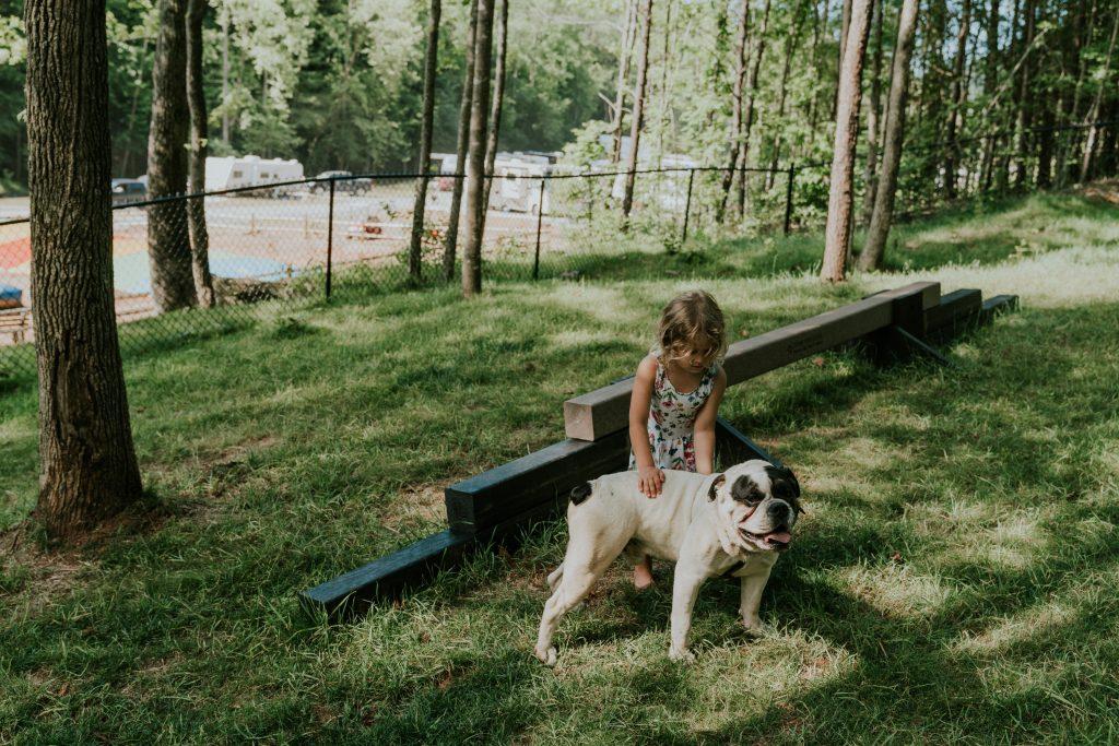 Dog friendly cabins