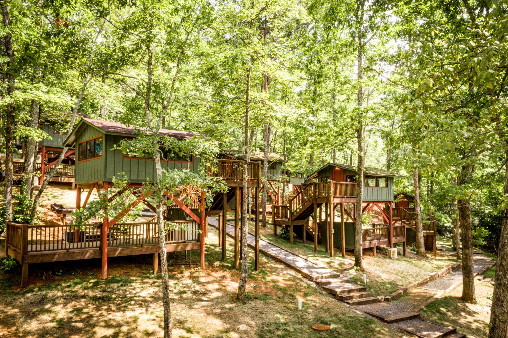 Treehouses among the green trees at Jellystone's Golden Valley location.