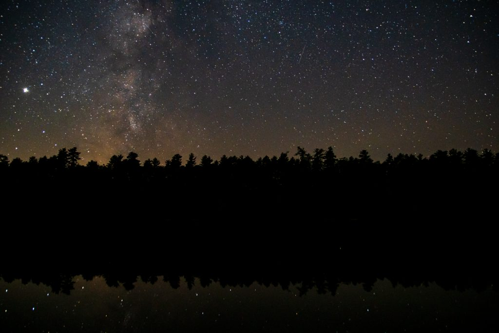 A treeline silhouette under the stars at Two Lakes Camping Area in Oxford, ME.