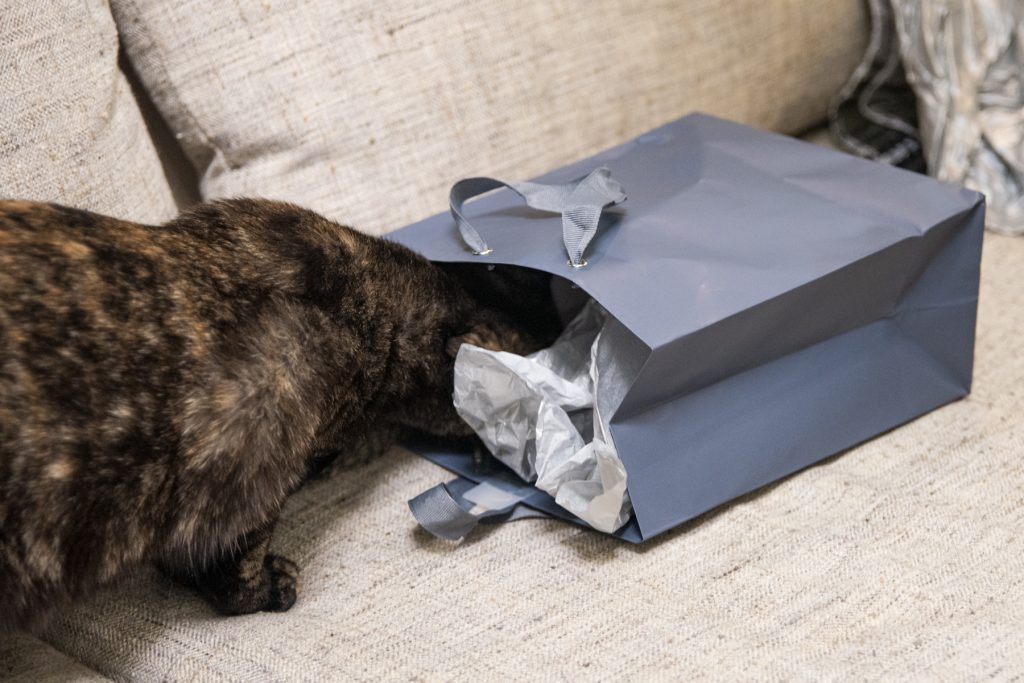 A black cat sticks its head inside of a present.
