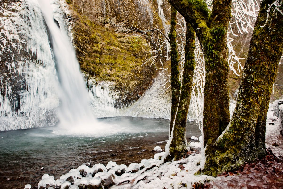 An ice covered winter wonderland along the Columbia River Gorge in Oregon.  This was taken at Horsetail Falls.  All of the vegetation is covered with ice. Lewis & Clark Campground & RV Park is the perfect winter camping getaway in the Columbia River Gorge.