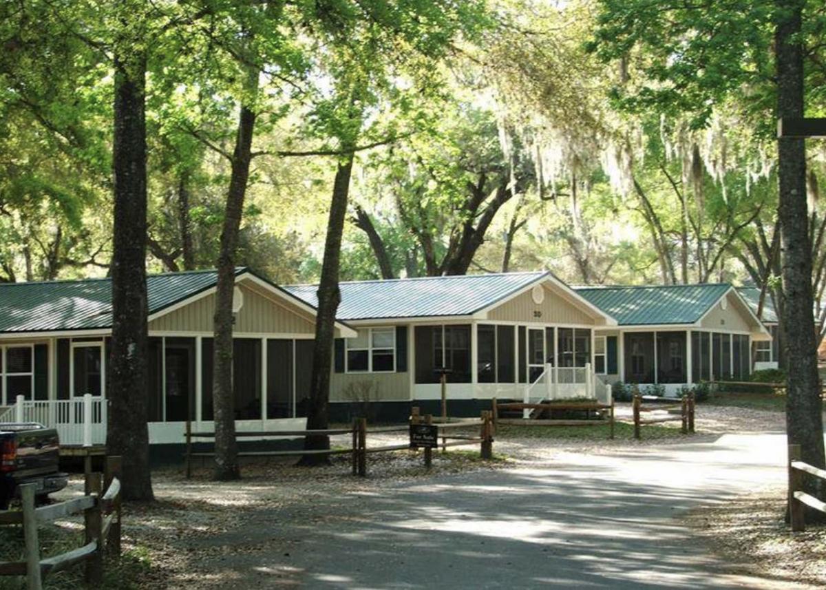 Cabins tucked in the trees at Elite Resort at Salt Springs.