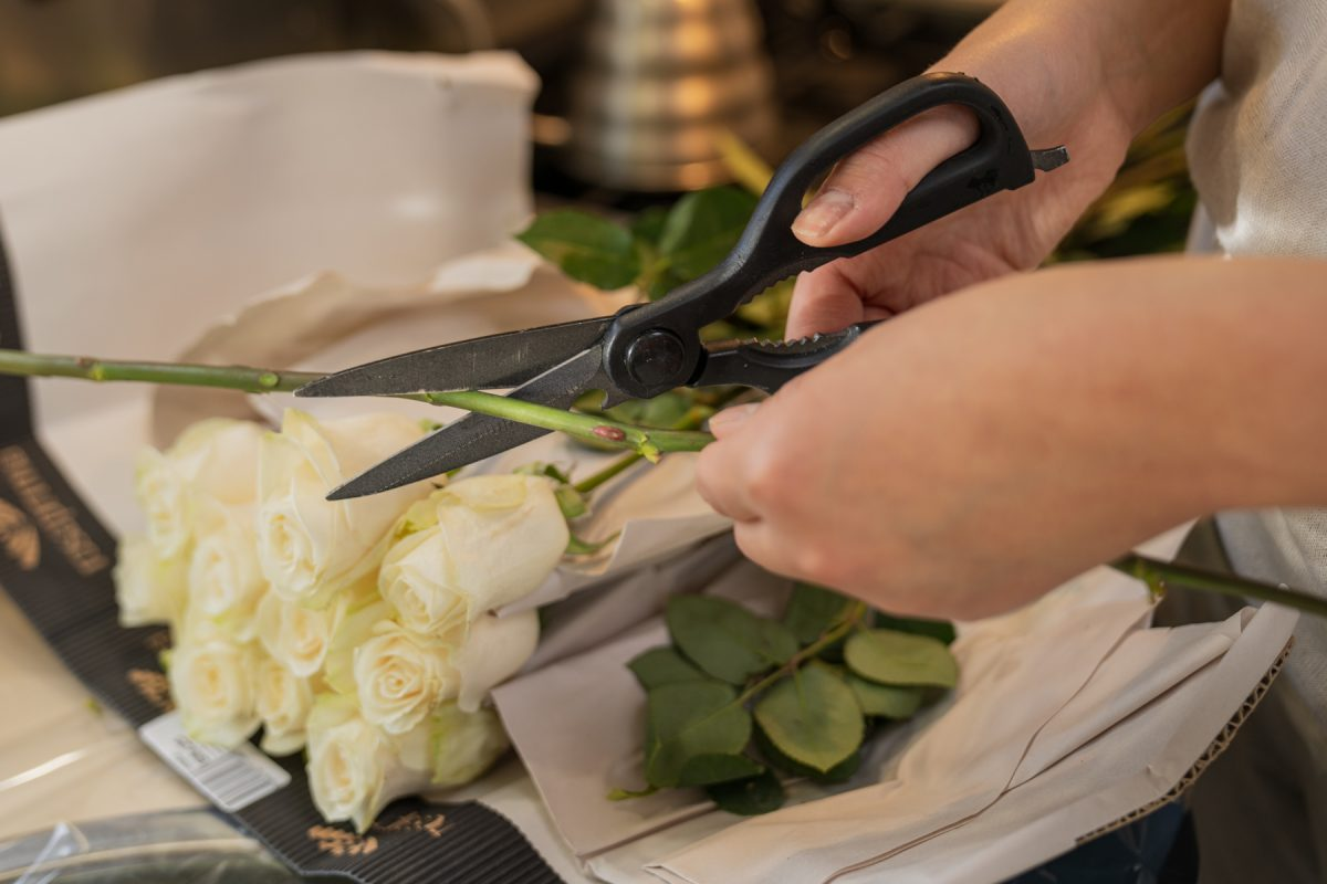 Using scissors, a woman cuts the rose stem at a 45-degree angle.