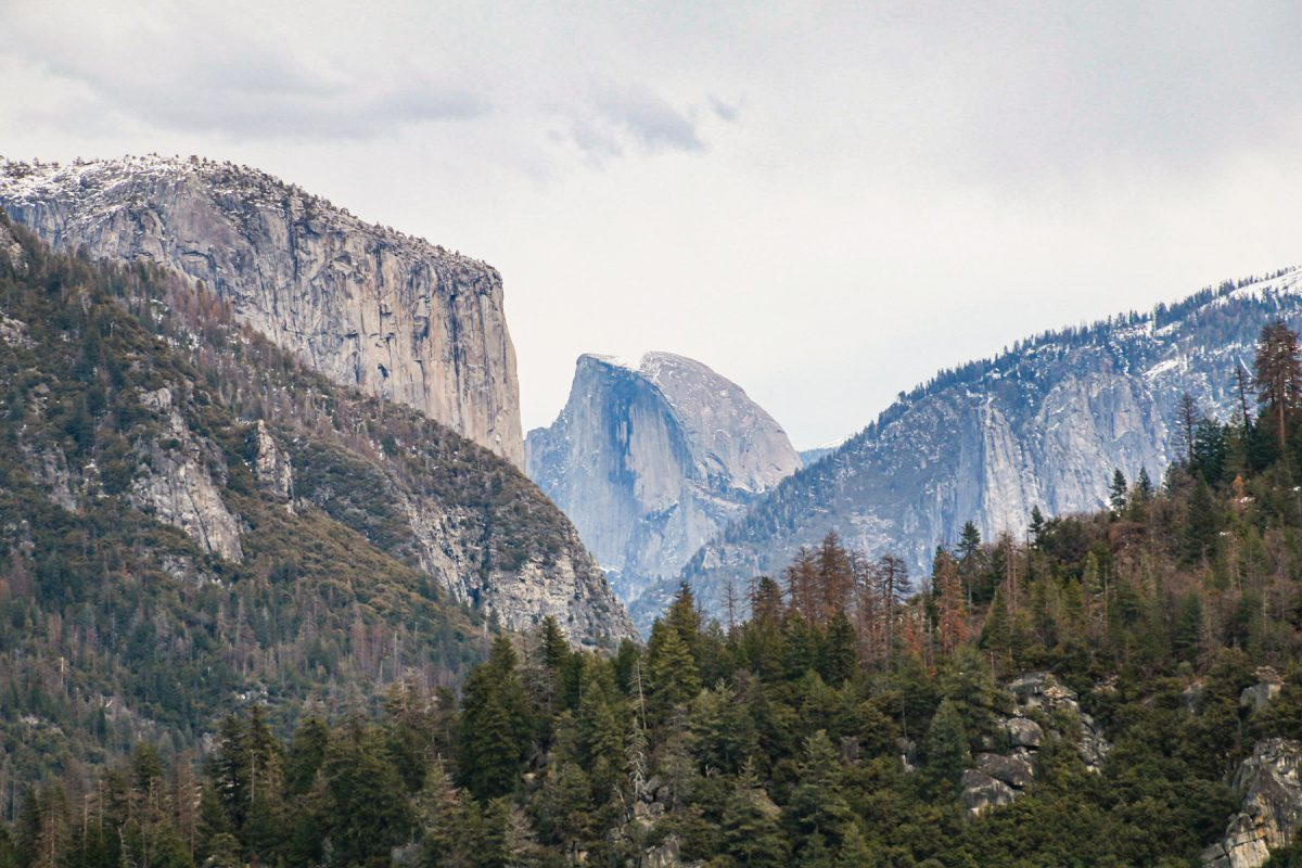 An epic lookout of El Capitan and the Half Dome at Yosemite National Park in California.