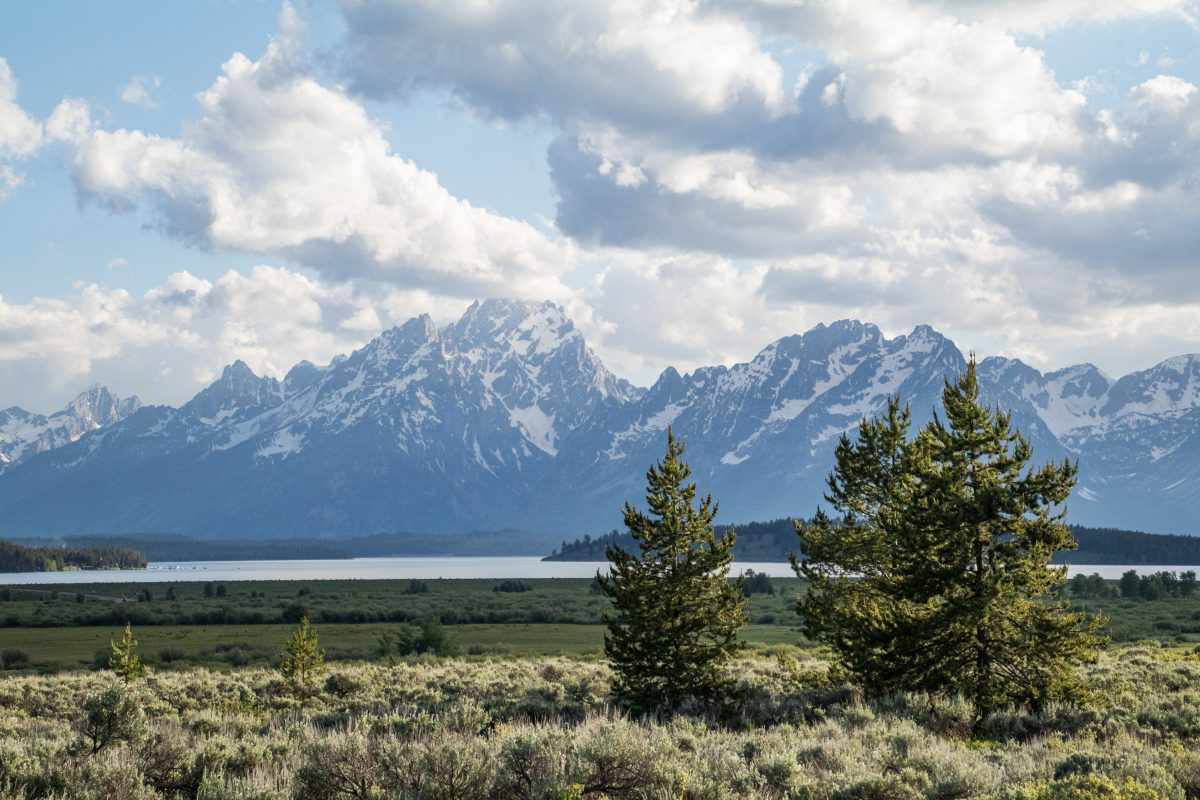 A landscape depiction of the Grand Tetons at Grand Teton National Park in Wyoming.