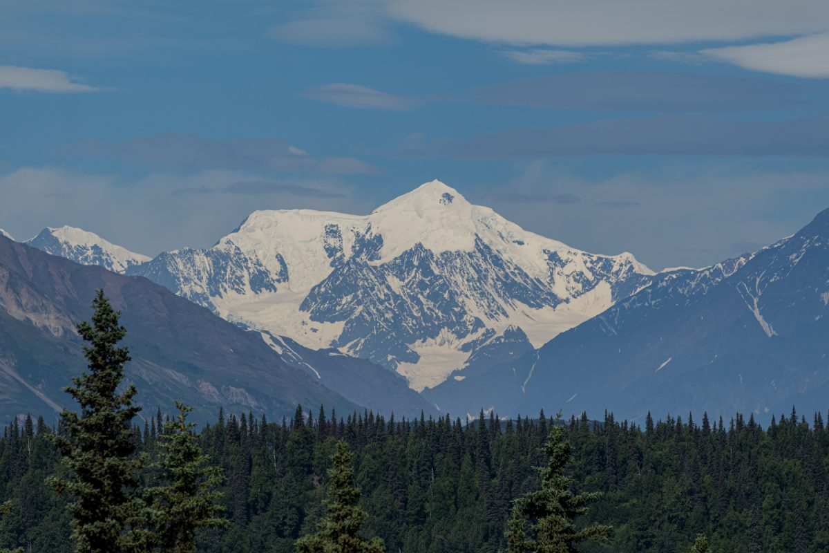 Mount Denali towering above a forest of pine trees at Denali National Park and Preserve in Alaska.