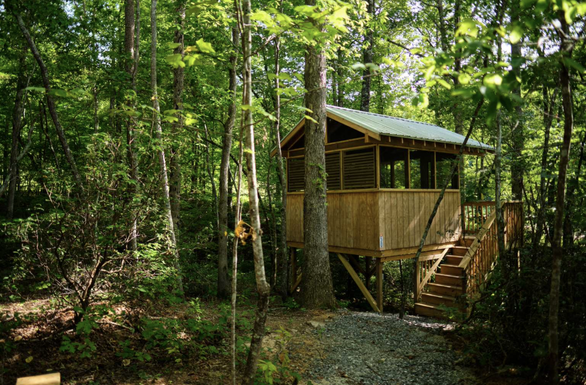 Primitive tree house in the woods surrounded by trees