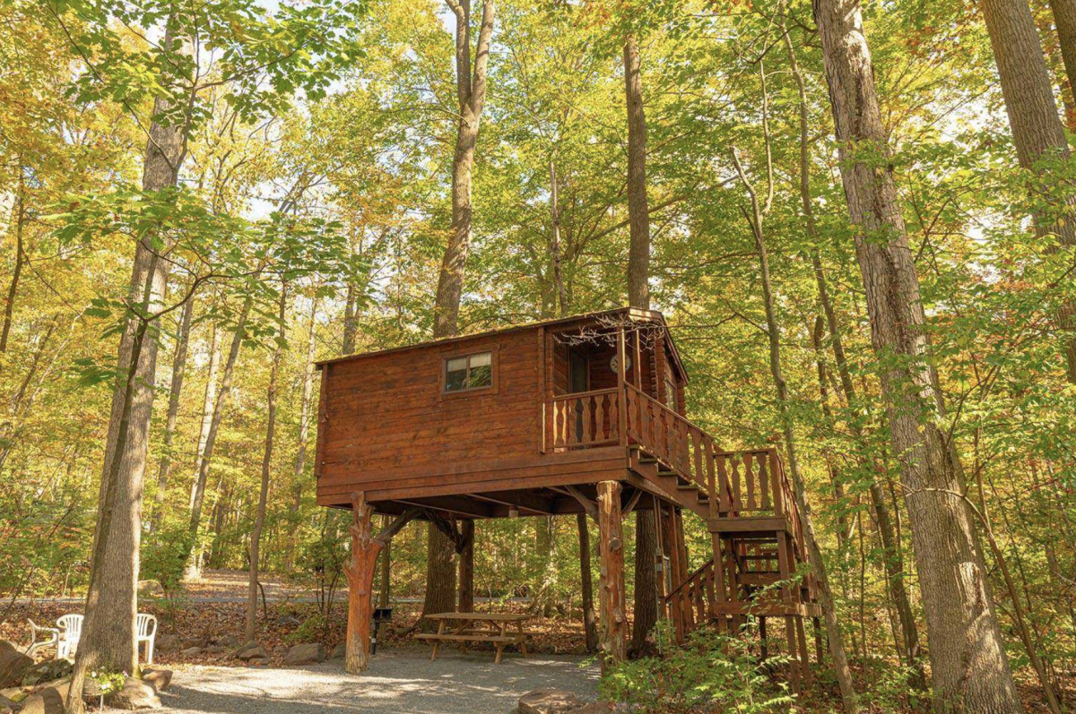 Treehouse cabin in the woods with picnic table tucked beneath