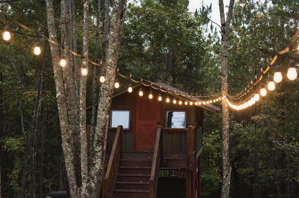Treetop cabin in the woods with string lights.