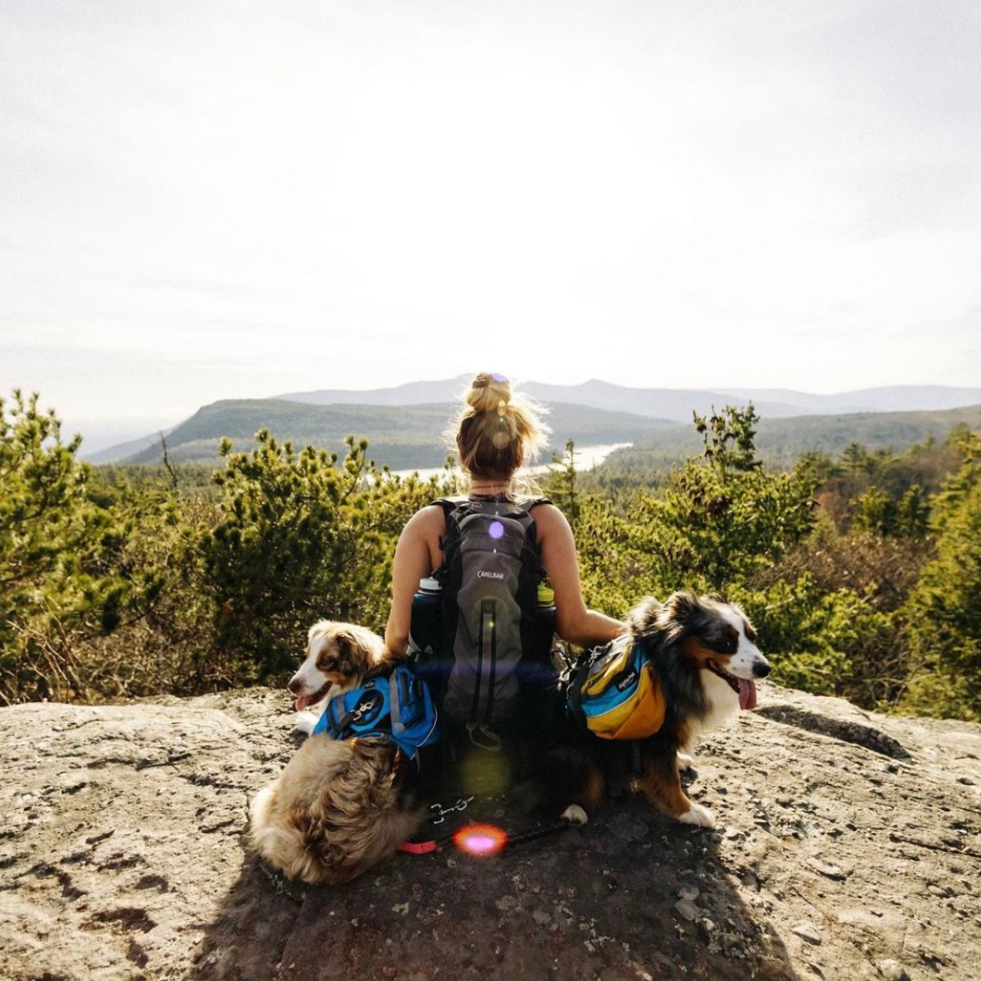 Campspot Ambassador, Jackie with her two dogs hiking in New York