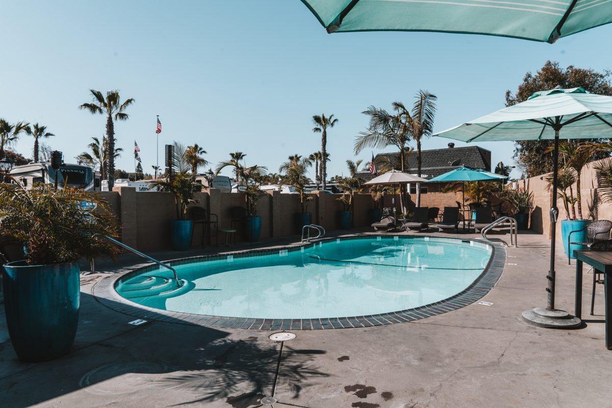 Pool area with palm trees in the back at Paradise by the Sea RV Resort