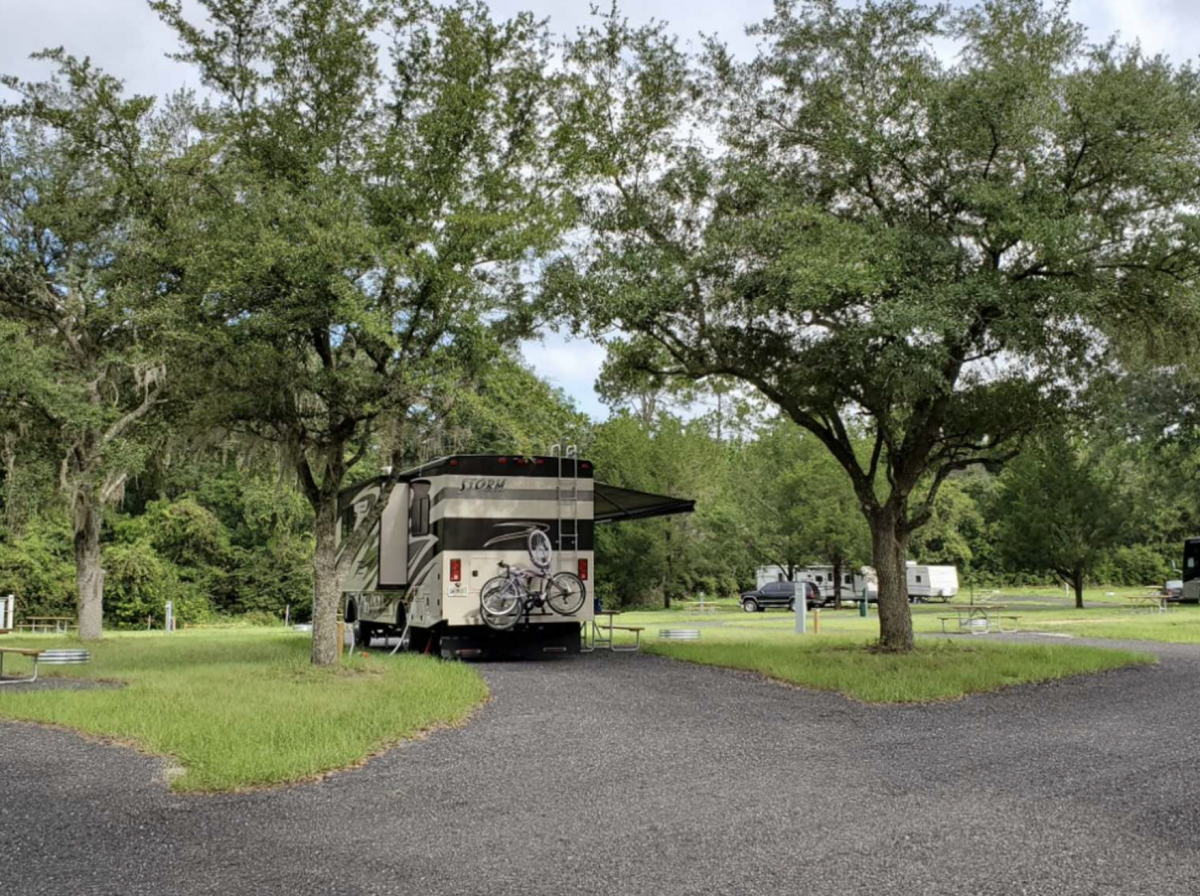 RV parked under the trees at Moonshine Acres RV Park