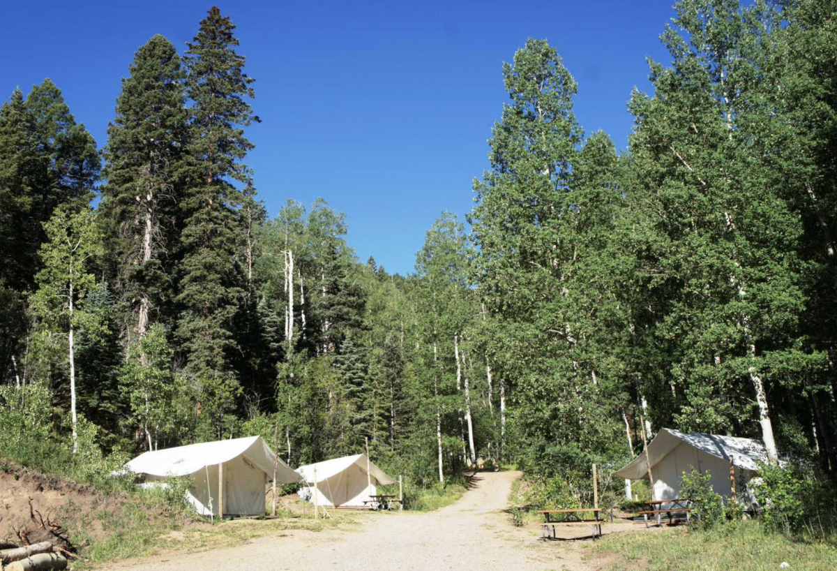 Outfitter tents in the woods at Aspen Acres Campground