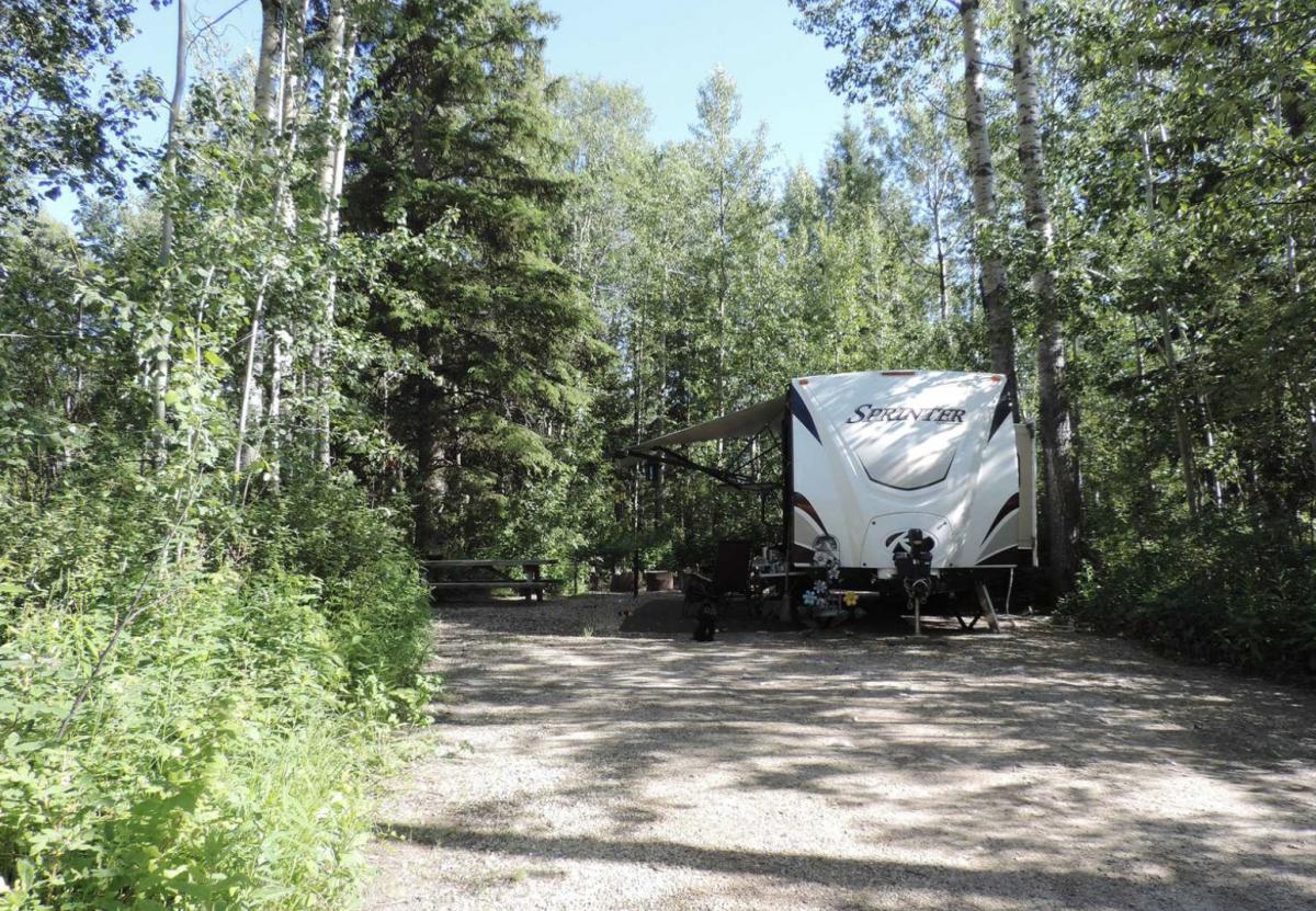 RV parked in the woods at Nitehawk Year-Round Adventure Park.