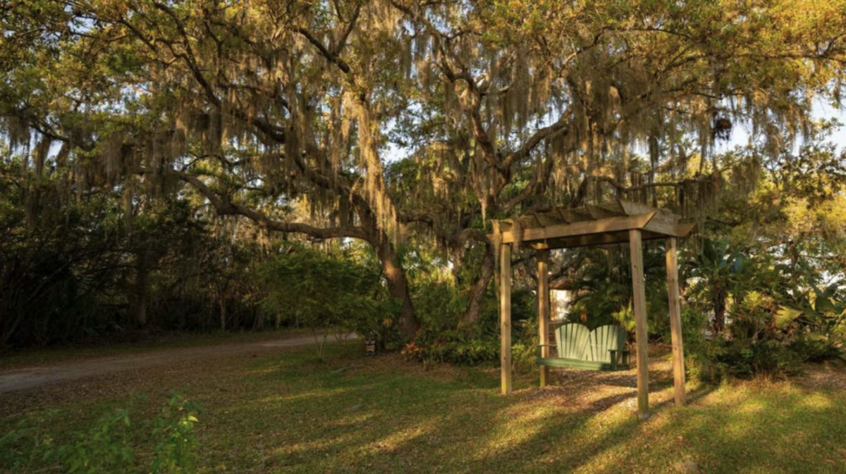 Relaxation area under Spanish moss covered trees at Horseshoe Cove RV Resort (55+) in Bradenton, Florida