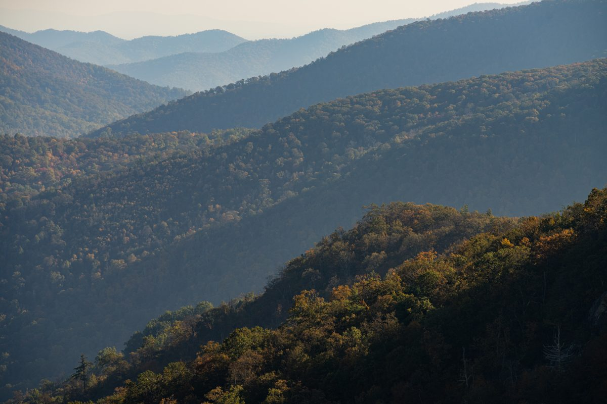 The rolling landscape of the Shenandoah Mountains in Virginia.