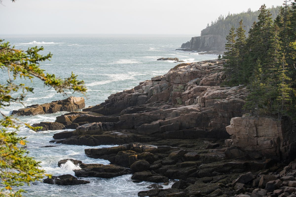 The rocky coast of Acadia National Park in Maine.
