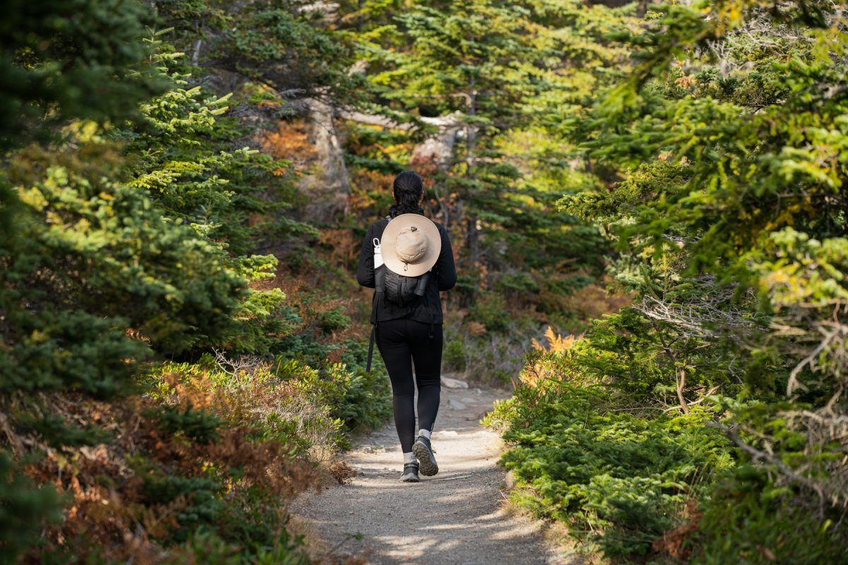 A hiker walks along the Ocean Path Trail in Acadia National Park in Maine.